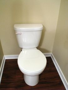 2419 Master bath toilet with enlarged seat