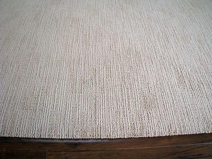 2518 Looped pile living room carpet