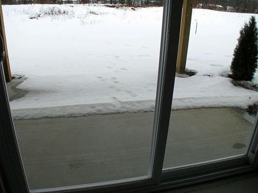 2518 Glass slider, patio outside lower level family room