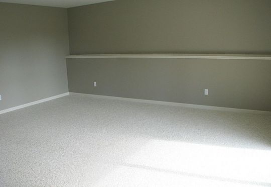 Lower level carpeted family room.
