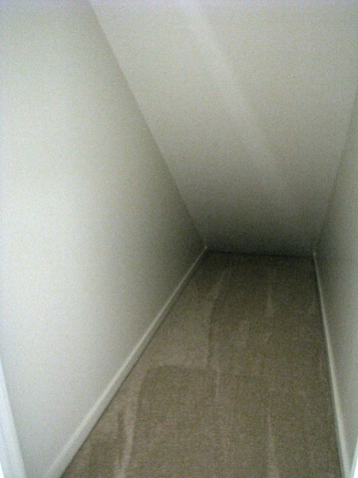 Carpeted storage area under stairs in lower level.