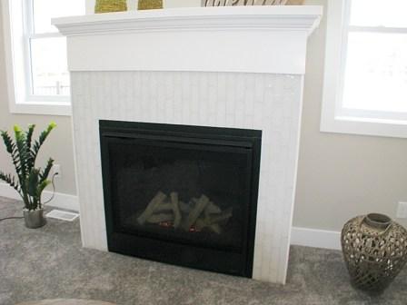 6406 Fireplace
