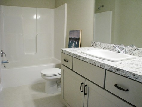 6406 lower bath
