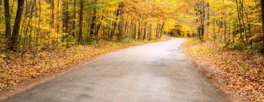 Awenda_Autumn-Road.jpg