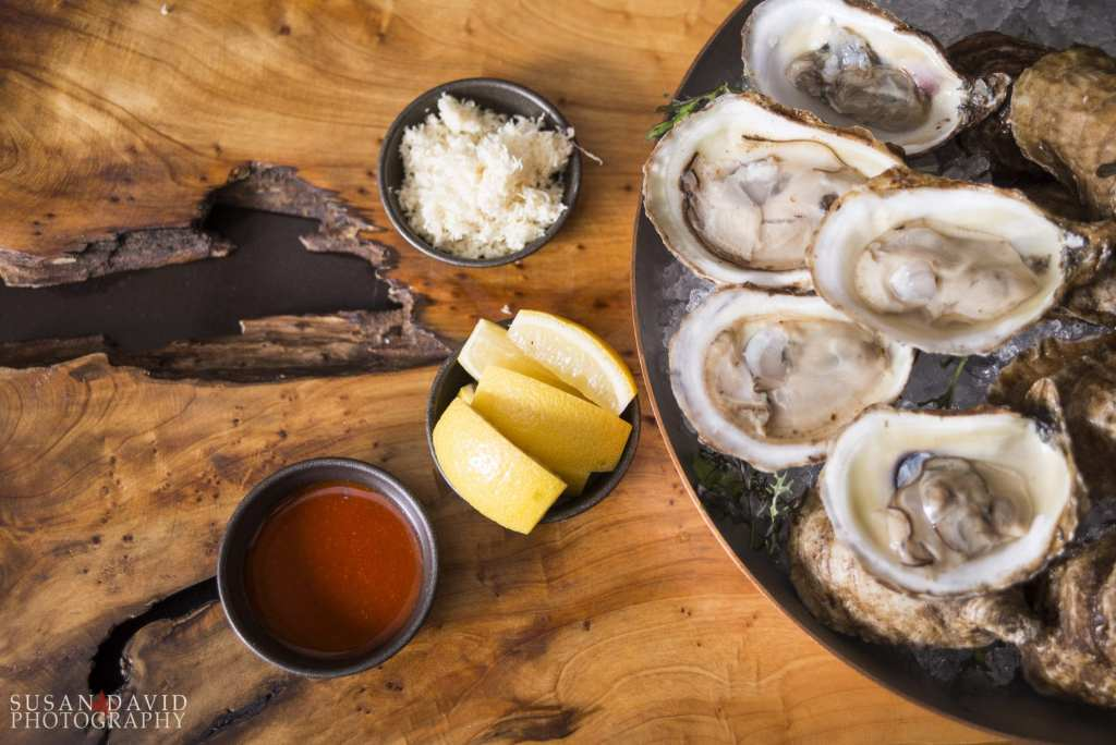 Oysters_above.jpg