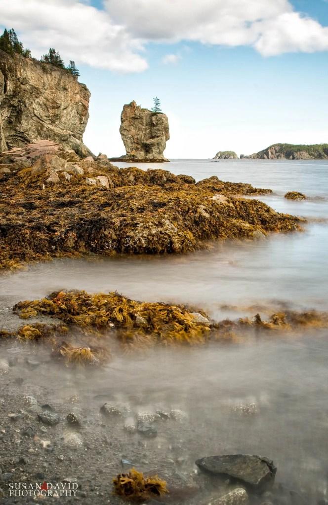 Harrys-Harbour.jpg