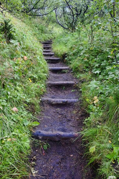 Thorsmork Path 2