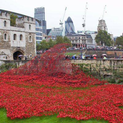 A beautiful art exhibit at The Tower of London