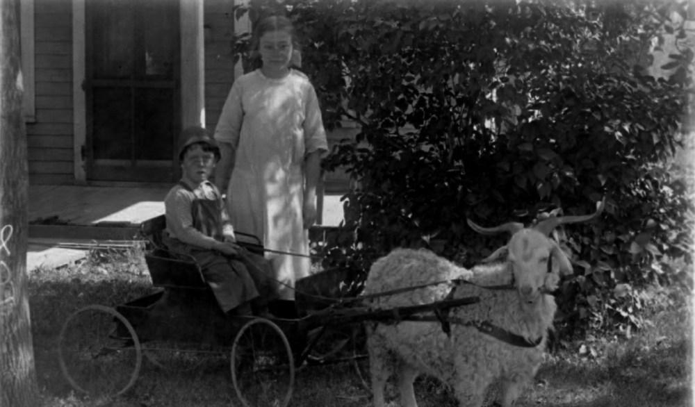 The Goat Cart