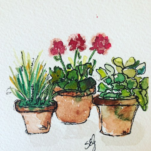Watercolor of plants in pots