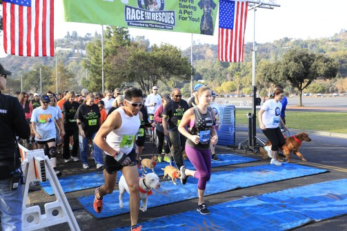 race for the rescues