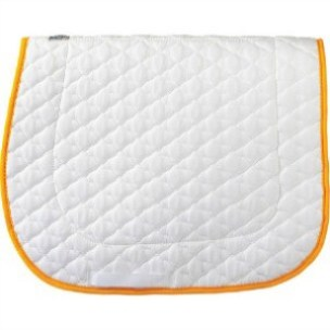 Wilkers schooling pad with gold piping