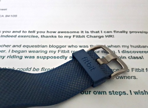 Open Letter to the Fitbit CEO from an Equestrian | Saddle