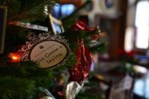 SGP_8246 Susan Guy_Charlecote Christmas w