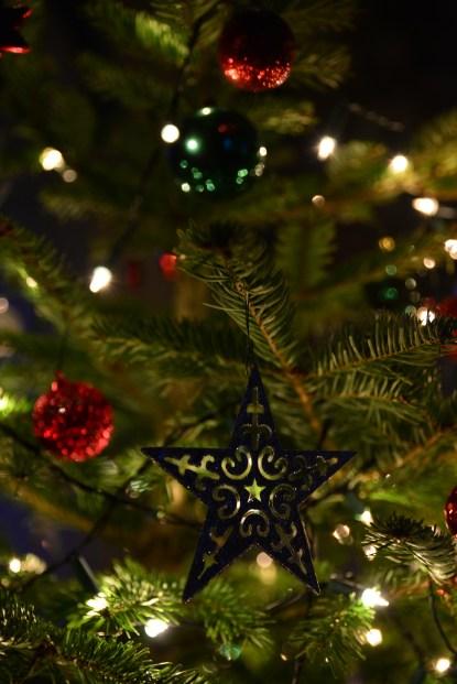 SGP_8650 Susan Guy_Calke Christmas w