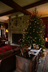 SGP_9086 Susan Guy_Baddesley Christmas w