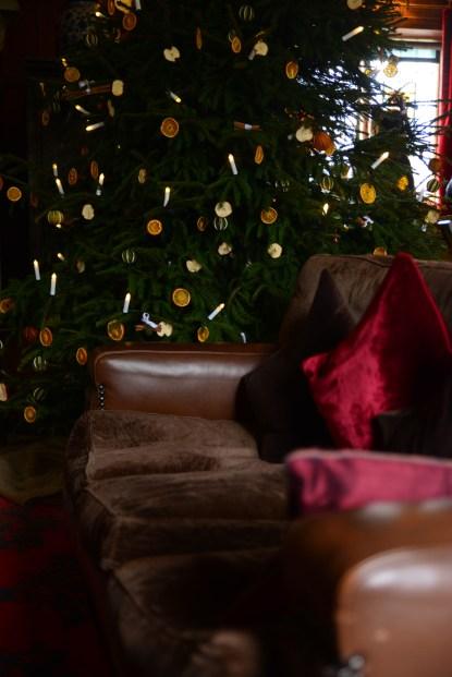 SGP_9088 Susan Guy_Baddesley Christmas w