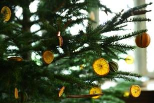 SGP_9151 Susan Guy_Baddesley Christmas w