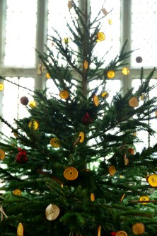 SGP_9152 Susan Guy_Baddesley Christmas w