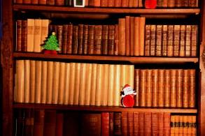 SGP_9163 Susan Guy_Baddesley Christmas w