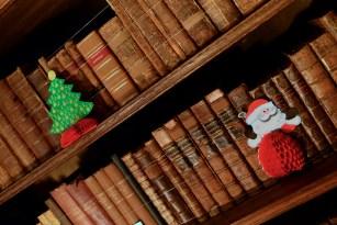 SGP_9176 Susan Guy_Baddesley Christmas w