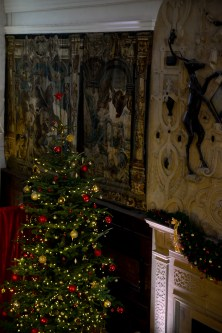 SGP_9406 Susan Guy_Hardwick Hall_Christmas w