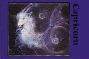 4. Capricorn
