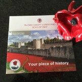 picture of a ceramic Tower of London poppy