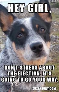 Rodie meme election