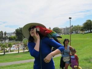 parrot toys 81813 003