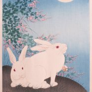 2020 Virgo Full Moon in Rabbit Month
