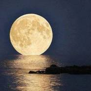 2021 Pisces Full Moon in Phoenix (Rooster) Lunar Month