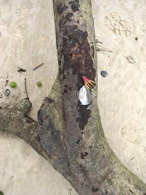 Beach collectables