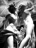 green-apollo&daphne