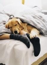 mens-puppy