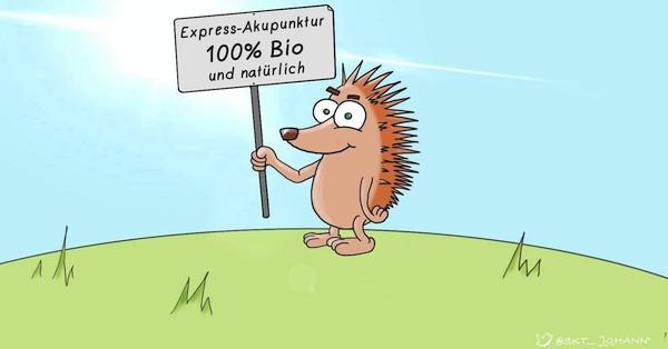 """Die """"deutsche Akupunktur""""? Was ist denn das nun wieder?"""