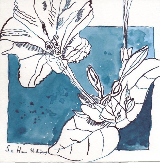 Gelbe Blumen - Zeichnung von Susanne Haun