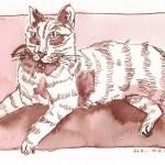 """""""Süße"""" - Zeichnung von Susanen Haun - 18 x 25 cm - Tusche auf Bütten"""
