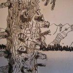 Tanne - Zeichnung von Susanne Haun - 15 x 20 cm - Tusche auf Aquarellkarton