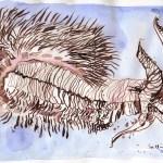 Borstenwurm - Zeichnung von Susanne Haun - 16,5 x 27 cm - Tusche auf Bamboo Papier