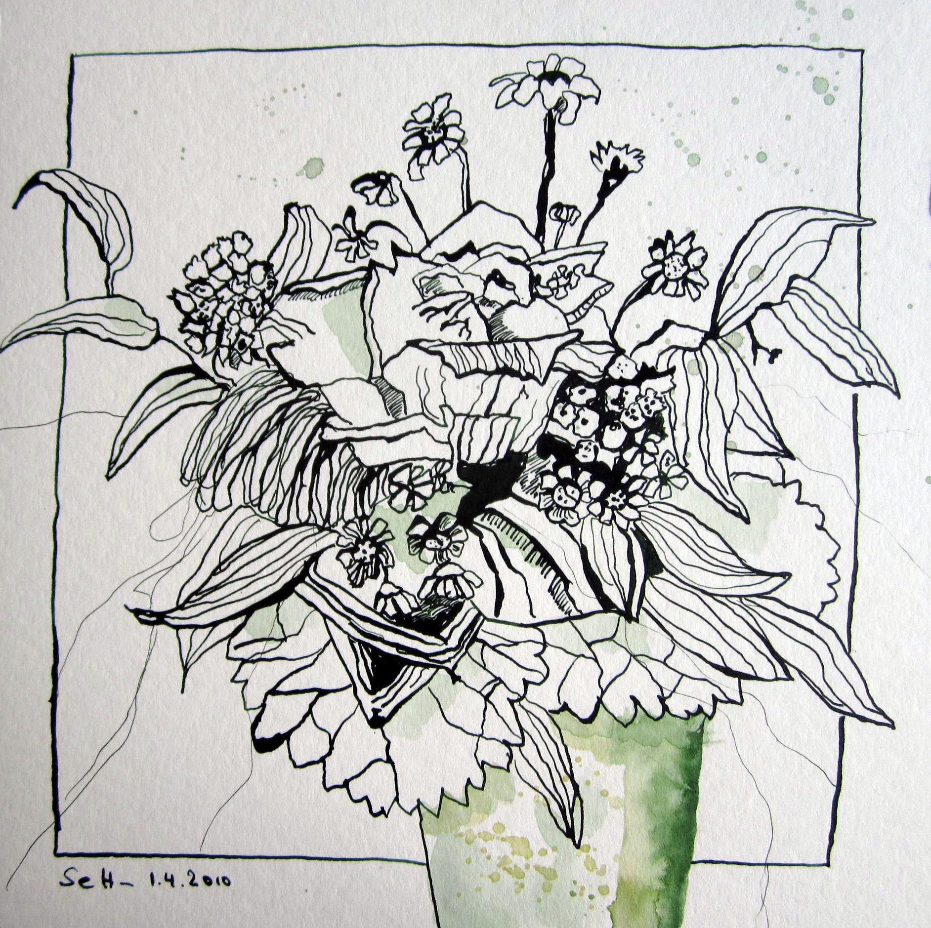 Getrocknete Blumen - Zeichnung von Susanne Haun 25 x 25 cm - Tusche auf Bütten