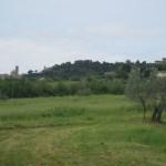 Blick nach Volterra - Foto von Conny Niehoff
