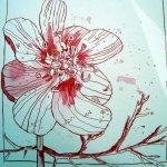 Rote Blüte aus der Toskana - Zeichnung von Susanne Haun - 25 x 25 cm - Tusche auf Bütten
