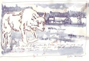 Da und dort strich einer über den Schnee, mager, hungrig und wachsam, lautlos und scheu wie ein Gespenst  - Zeichnung von Susanne Haun - 20 x 30 cm - Tusche auf Bütten