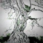 Olivenbaum - Zeichnung von Susanne Haun - 25 x 25 cm - Tusche auf Bütten