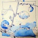 Zitronenbaumzweig II - Zeichnung von Susanne Haun - 25 x 25 cm - Tusche auf Bütten