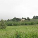 Mein Ausblick vom kleinen Hügel in die Toskana so wie der Fotoapparat es sieht