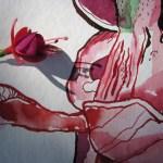 Ausschnitt Fuchsie mit Schattenspiele - Zeichnung von Susanne Haun