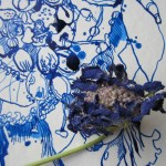 Detail verwelkte blaue Blüte - Zeichnug von Susanne Haun