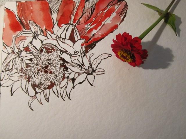 """Entstehung Zeichnung """"Rote Blume"""", 30 x 40 cm von Susanne Haun"""